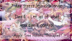 7 day stress less challenge day 1