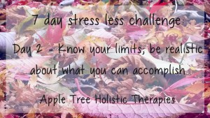 7 day stress less challenge day 2