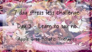 7 day stress less challenge day 3