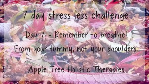 7 day stress less challenge day 7